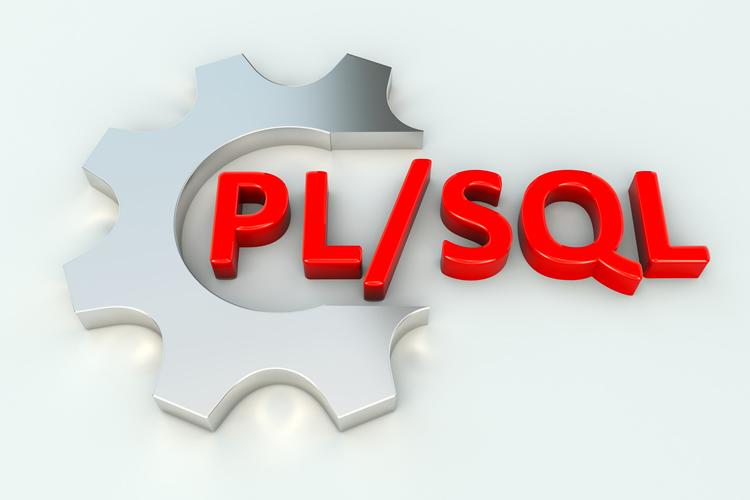 PL/SQL programming